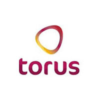 Torus: Asset Management Transformation